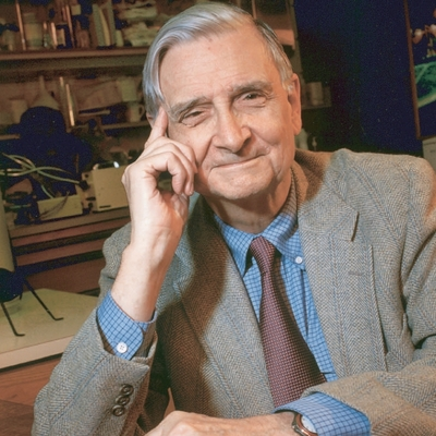 quote by E. O. Wilson