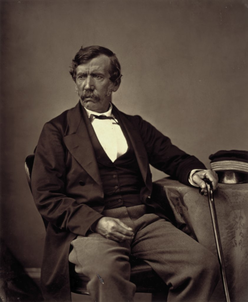 Picture of David Livingstone
