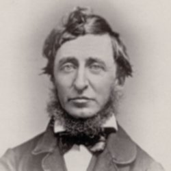 Henry David Thoreau quotes, quotations, sayings and pictures quotes