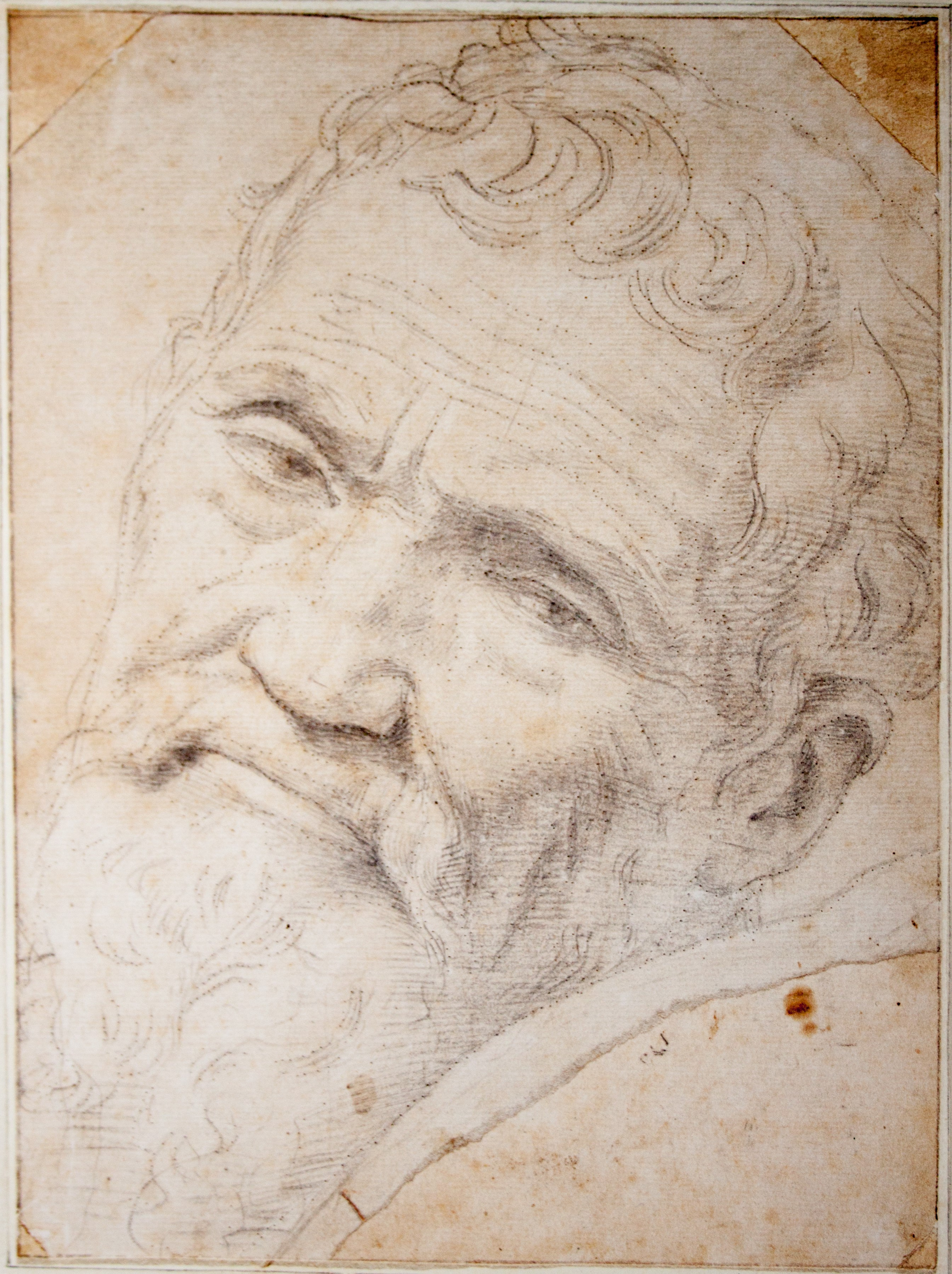 Michelangelo quotes and images