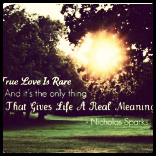 Real love quote True love is rare and the only thing that gives life a real meaning.