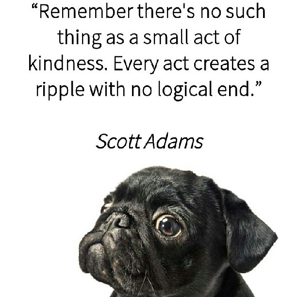 Logic quote Remember there's no such thing as a small act of kindness. Every act create a ri