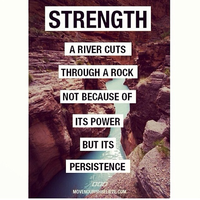 Punk rock quote A river cuts through a rock not because of its power, but its persistence