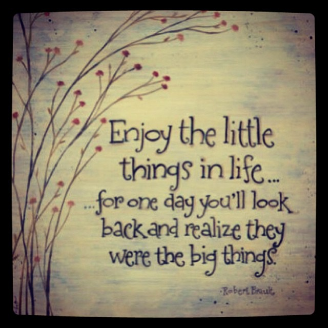 Enjoy the little thing in life... for one day you'll look back and realize they were the big things. - Robert Brault