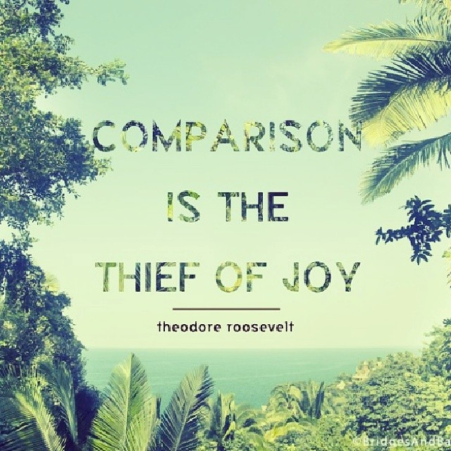 Comparison is the thief of joy. - Theodore Roosevelt