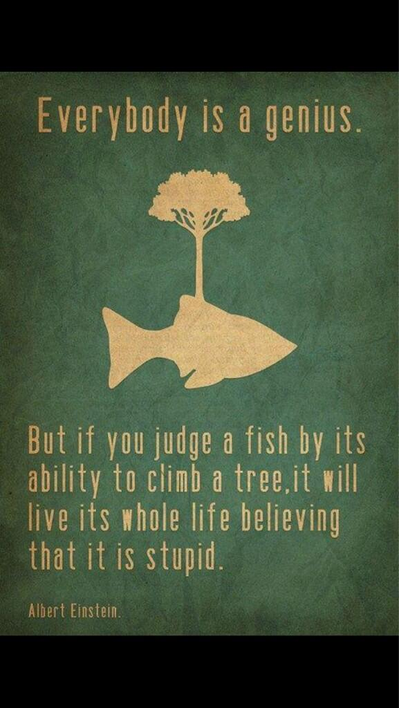 Trout fishing quote Everybody is a genius. But if you judge a fish by its ability to climd a tree, i