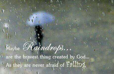 Bravest quote Maybe raindrops are the bravest things created by God, as they are never afraid