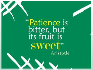 Sweet fruit quote Patience is bitter, but its fruit is sweet