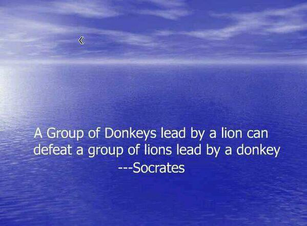 A group of donkeys lead by a lion can defeat a group of lions lead by a donkey. - Socrates
