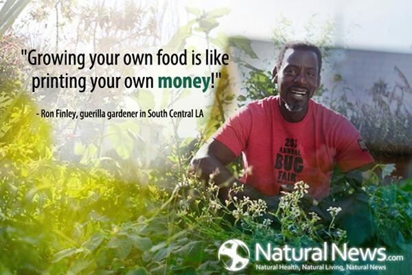 Gardens quote Growing you own food is like printing your own money!