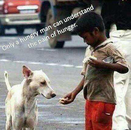 Hunger quote Only a hungry man can understand the pain of hunger.