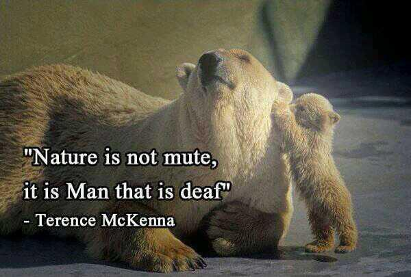 Deaf quote Nature is not mute, it is man that is deaf.