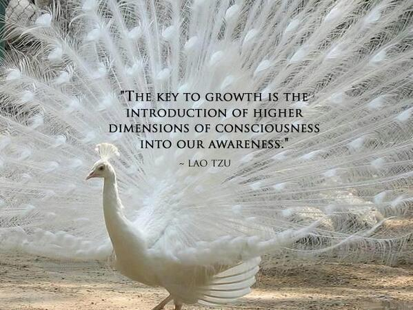 Conscious quote The key to growth is the introduction of higher dimensions of consciousness into
