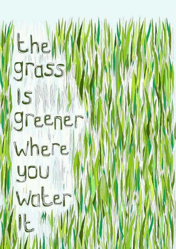 Green quote The Grass is greener where you water it