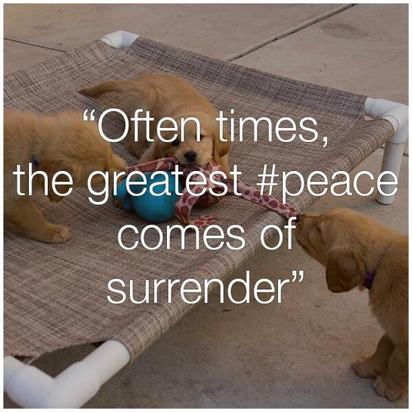 There comes a time quote Often times, the greatest peace comes of surrender.