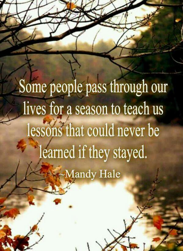 You live and you learn quote Some people pass through our lives for a reason to teach us lessons that could n