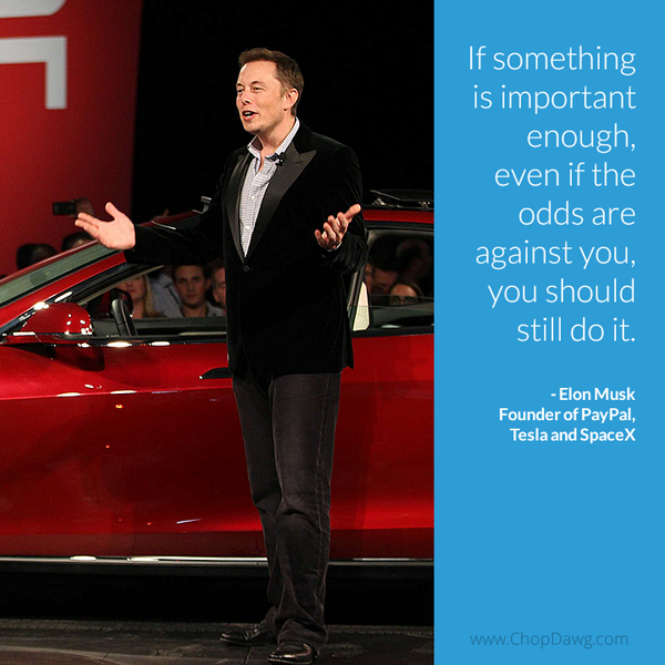 Elon Musk quote If something is important enough, even if the odds are against you, you should s