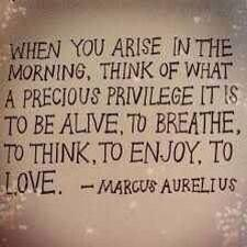 When you arise in the morning, think of what a precious privilege it is to be alive, to breathe, to think, to enjoy, to love. - Marcus Aurelius