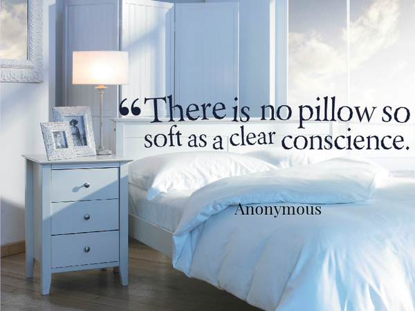 Soft quote There is no pillow so soft as a clear conscience.