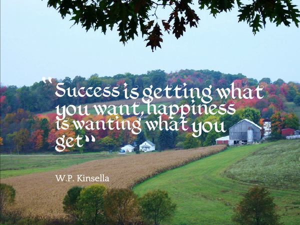 I just want to be happy quote Success is getting what you want, happiness is wanting what you get.