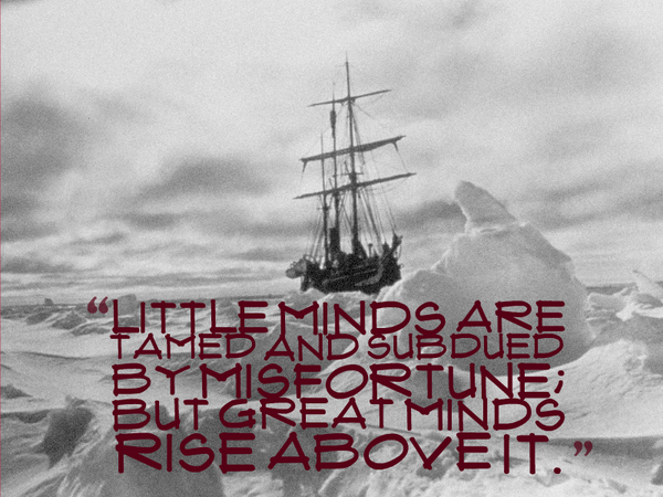 Misfortune quote Little minds are tamed and subdued by misfortune; But great minds rise above it.