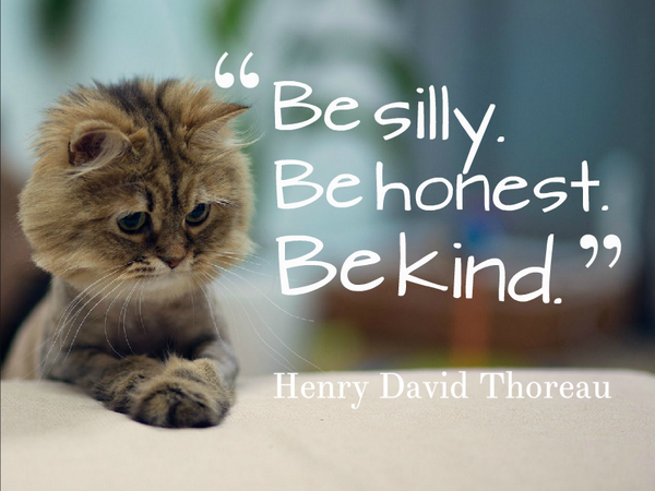 Not honest quote Be silly. Be honest. Be kind.