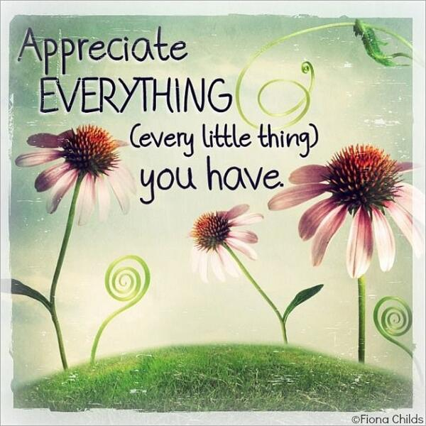 Appreciate everything (every little thing) you have. - Unknown