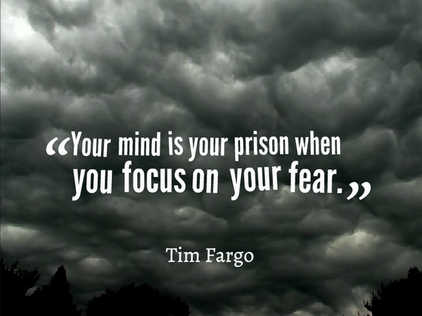 Picture quote by Tim Fargo about mind