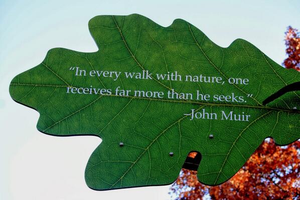 Received quote In every walk with Nature one receives far more than he seeks.