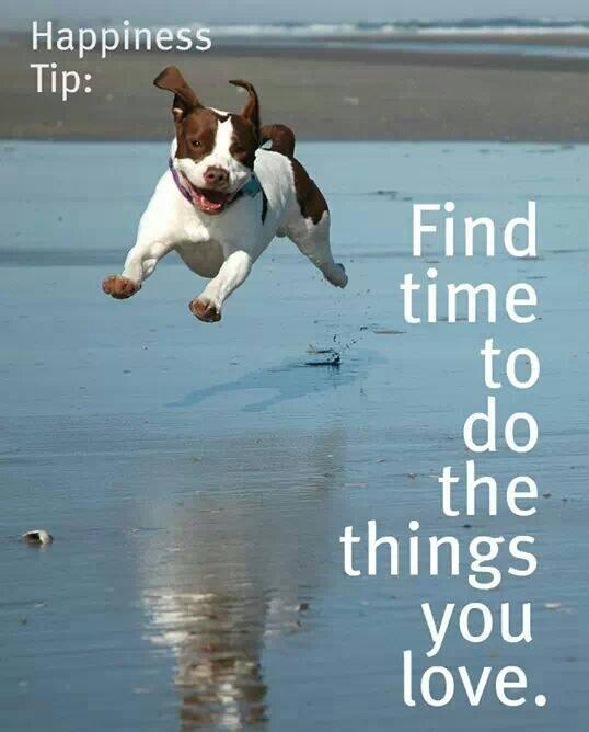 Finding happiness quote Find time to do the things you love.