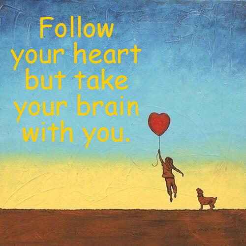 Advice quote Follow your heart but take your brain with you.