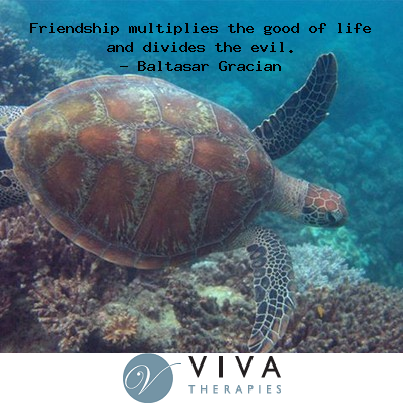 Evils quote Friendship multiplies the good of life and divides the evil.