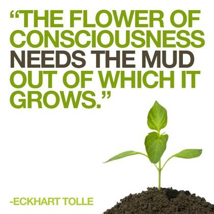 Consciousness quote The flower of consciousness needs the mud out of which it grows.