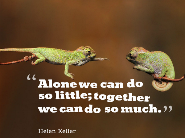 Cooperatively quote Alone we can do so little; together we can do so much.