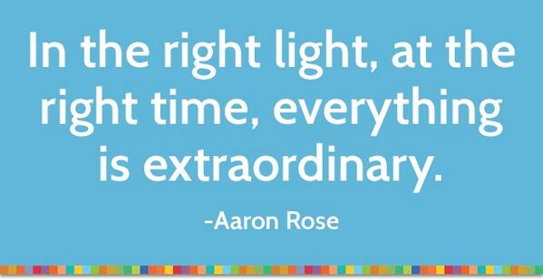 Extraordinary quote In the right light, at the right time, everything is extraordinary.