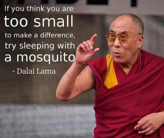 Sleeping quote If you think you are too small to make a difference, try sleeping with a mosquit
