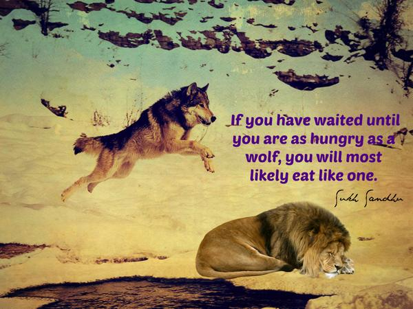 Hunger Quotes Best Best Hunger Quotes Sayings And Quotations  Quotlr
