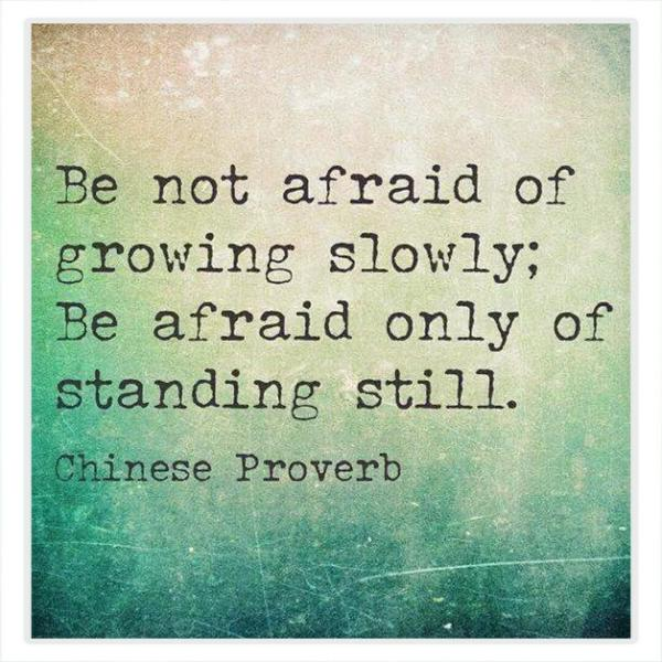 Slow progress quote Be not afraid of growing slowly; Be afraid only of standing still.
