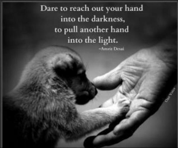 Reach quote Dare to reach your hand into the darkness to pull another hand into the light.