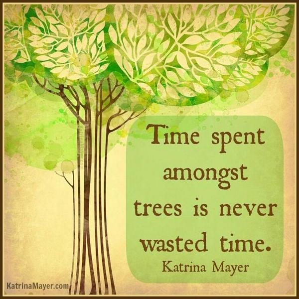 Time spent amongst trees is never wasted time. -