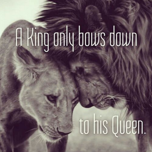 A King only bows down to his Queen.