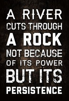 Punk rock quote A river cuts through a rock not because of its power but its persistence.