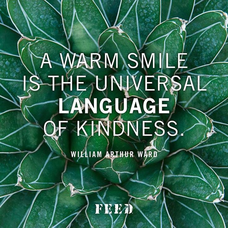 Colleges universities quote A warm smile is the universal language of kindness.