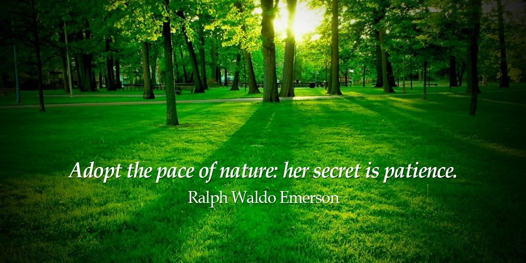 Adopt the pace of nature: her secret is patience. - Ralph Waldo Emerson