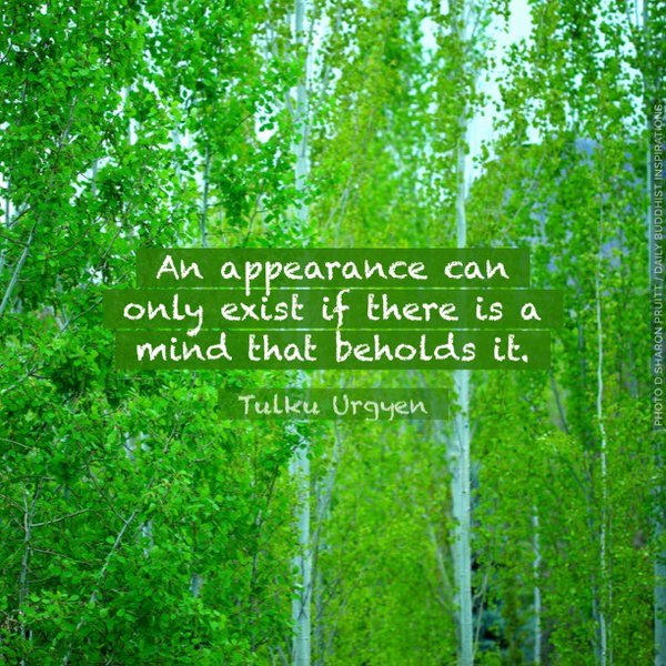 An appearance can only exist if there is a mind that beholds it. - Tulku Urgyen Rinpoche