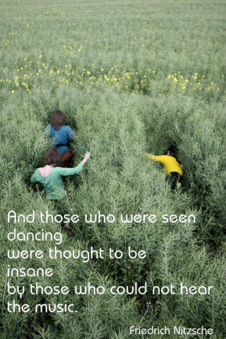 Sane quote And those who were seen dancing were thought to be insane by those who could not