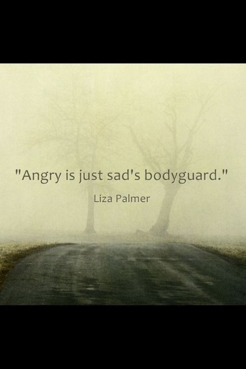 Angry is just sad's bodyguard. - Liza Palmer