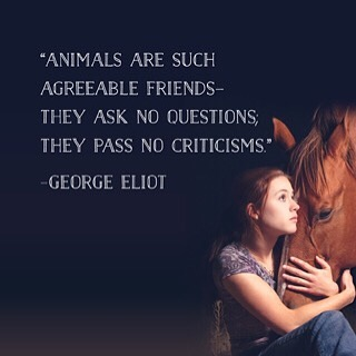 Animals are such agreeable friends - they ask no questions, they pass no criticisms. - George Eliot