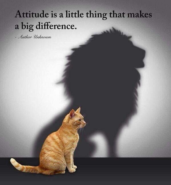 Differences quote Attitude is a little thing that makes a big difference.