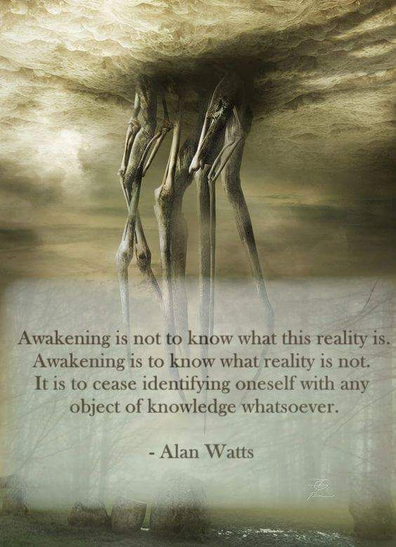 Awakening is not to know what this reality is. Awakening is to know what reality is not. It is to cease identifying oneself with any object of knowledge whatsoever.